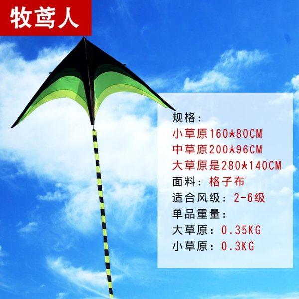風箏新款大草原三角長尾風箏大型微風易飛高檔成人兒童 芊惠衣屋  YYS