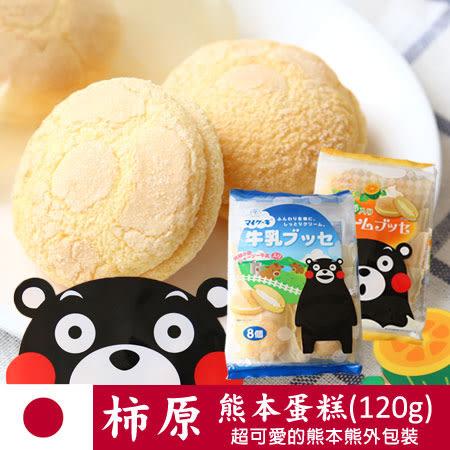 日本 柿原 My cake 熊本蛋糕 (8入) 120g 熊本熊 鮮奶蛋糕 南瓜奶油蛋糕 夾心蛋糕 蛋糕