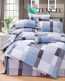 ✰加大 薄床包兩用被四件組✰ 100%純天絲《格旅》