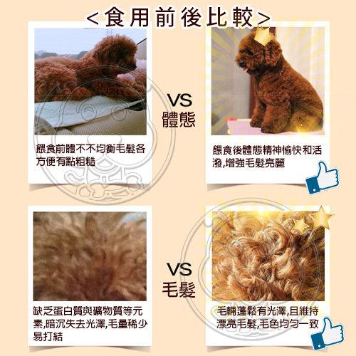 【zoo寵物商城】Happy Dog《快樂狗》羊肉高嗜口皮膚毛髮挑嘴狗飼料-600g 試吃包