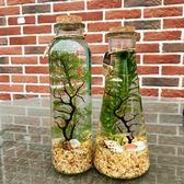 觀賞魚生態瓶微景觀免換水diy水族箱辦公桌面創意造景斗魚玻璃缸 雙12購物節