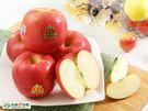 富士蘋果2入(550g/盒)