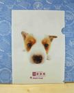 【震撼精品百貨】新大頭狗_The Dog~文件夾-柯基