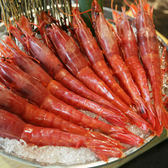 ㊣盅龐水產◇胭脂蝦◇淨重1kg±5%/盒 毛重1.5kg±%/盒◇零$1200元/盒◇ 生食 海中的紅寶石 批發