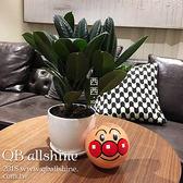 玩具 卡通手抓球可充氣柔軟彈力橡膠皮球 QB allshine