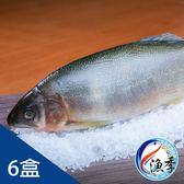 【漁季】特選宜蘭公香魚*6盒(920g±10%/盒)