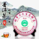普洱茶 冰島 老樹 班章喬木 生茶 500年