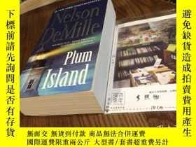 二手書博民逛書店英文原版罕見plum islandY181828 Nelson Demille Grand Central
