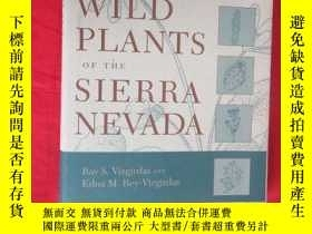 二手書博民逛書店Wild罕見Plants of the Sierra Nevada (16開,精裝 ) 【詳見圖】Y5460