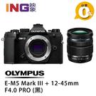 【6期0利率】申請送2千禮券+原電 Olympus E-M5 Mark III+12-45mm F4 PRO ((黑色)) 元佑公司貨 EM5M3 3代