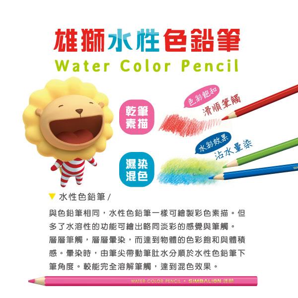 【雄獅】12色水性色鉛筆