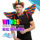 美國 SMIFFYS 彩虹羽毛翅膀 RAINBOW SMALL FEATHER WINGS 炒熱派對氣氛的裝飾配件