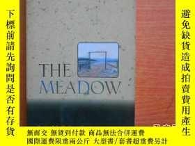 二手書博民逛書店The罕見Meadow23429 Galvin, James H