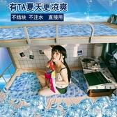 冰床墊冰墊床墊單人學生宿舍夏天制冷降溫神器枕頭水床墊坐墊冰墊CY1207【艾菲爾女王 】