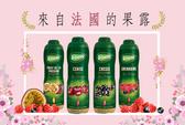 Teisseire 法國果露 600ml(櫻桃/黑醋栗/綜合莓/百香果) -汽泡水機專用果醬/ 糖漿