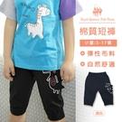 男童鱷魚造型縮口棉短褲 黑色及膝短褲[98125]RQ POLO 小童 春夏 童裝 5-17碼 現貨