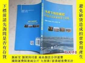 二手書博民逛書店水庫下特厚煤層綜放開採技術研究與實踐罕見1版1印 新書11802
