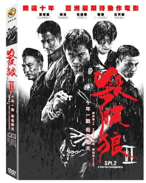 殺破狼2 DVD (購潮8) 4715219793471