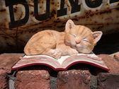 《齊洛瓦鄉村風雜貨》日本zakka雜貨 貓咪系列擺飾 動物模型 貓咪在書本上睡覺 可愛小貓咪裝飾
