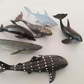 仿真海洋生物動物模型玩具北極熊虎鯨大白鯊魚海龜海豚企鵝藍鯨-金牛賀歲