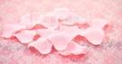 一定要幸福哦~~玫瑰花瓣~(粉色)二次進場,花童籃