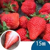 天藍果園-大湖草莓(15顆)含運組