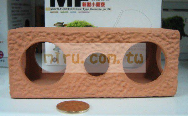 【西高地水族坊】雅柏UP代理 陶瓷製品 三洞屋,陶瓷磚塊L