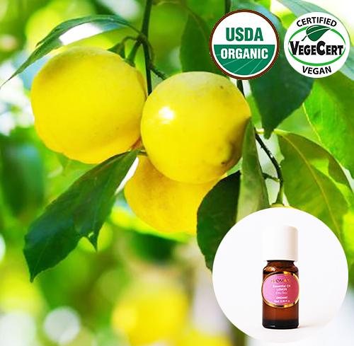 有機精油10ml-檸檬 Lemon Organic Essential Oil ~ 美國USDA有機認證