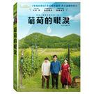 葡萄的眼淚DVD 大泉洋/染谷將太...