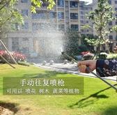 園藝長桿噴槍噴壺往復式農用噴霧器