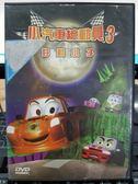挖寶二手片-P10-401-正版DVD-動畫【小汽車總動員3 好動小子】-國英語發音