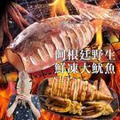 美食饗宴-阿根廷鮮凍大魷魚
