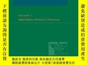 二手書博民逛書店Flora罕見Of North America: Volume 7: Magnoliophyta: Salicac
