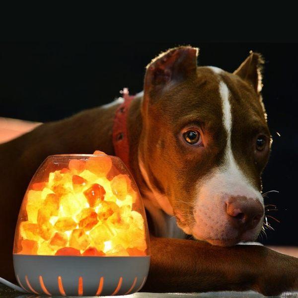 白山LED玫瑰鹽晶燈(Dhaulagiri/白)