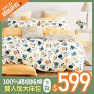 雙人加大床包【精梳純棉-多款可選】含兩件枕套 100%精梳棉 戀家小舖台灣製
