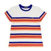 『小鱷魚童裝』撞色條紋T恤(10號~20號)531459