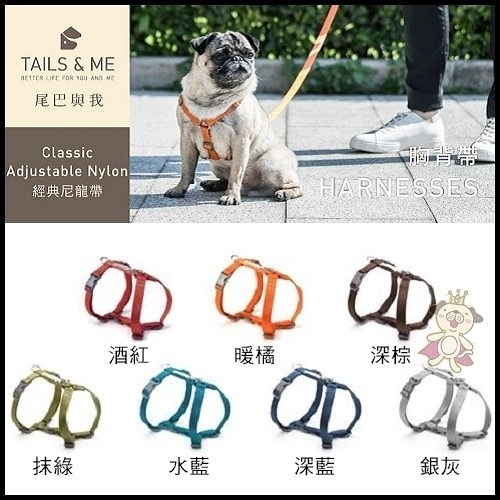 *WANG*台灣製TAILS&ME 尾巴與我《經典系列胸背帶》L號賣場