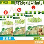 健康時刻 雙效牙刷潔牙骨-葉綠素325g/全犬種【寶羅寵品】