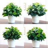 仿真植物塑料假花草綠蘿葉盆栽綠植客廳室內裝飾落地盆景花藝擺件 NMS生活樂事館
