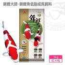 {台中水族} 海豐 錦鯉大師-錦鯉魚低脂成長飼料 紅中大粒 20kg 鋁箔袋