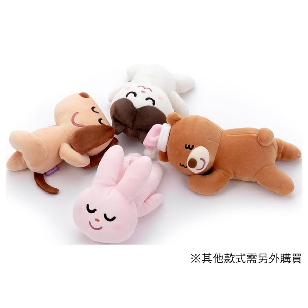 T-ARTS 睡覺好朋友 免費素材庫 小熊_TA54708