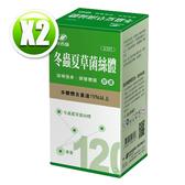 港香蘭 冬蟲夏草菌絲體膠囊(120粒/瓶)x2