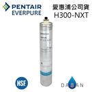 H-300-NXT 愛惠浦濾芯 贈7-11禮卷$300 EVERPURE 台灣愛惠浦 公司貨 專利活性碳 有雷射標籤 H300NXT 濾心