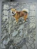 【書寶二手書T1/社會_GTG】被遺忘的動物們-日本福島第一核電廠警戒區紀實_太田康介