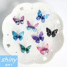 【DJB5508】shiny藍格子-仿真...