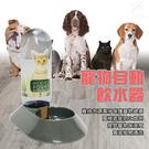 金德恩 台灣製造 LIXIT小型寵物貓狗四足類自動飲水瓶480cc