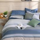 鴻宇 雙人加大薄被套床包組 100%精梳純棉 特調藍 台灣製C20107