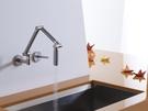 【麗室衛浴】美國廠 KOHLER KARBON®  廚房龍頭(裝牆式) K-6228-C11-CP (鉻)