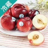 加州白甜桃6粒(120g±5%/粒)【愛買冷藏】