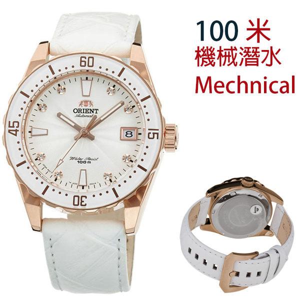 【萬年鐘錶】ORIENT 東方 SPORT  100m潛水錶 皮帶款 白色圈 械錶 FAC0A003W